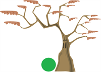 tree-576871_960_720.png
