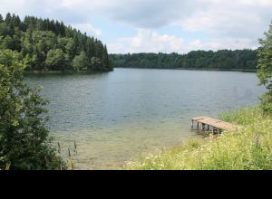 Каменск шахтинский дикие озера фото нравится